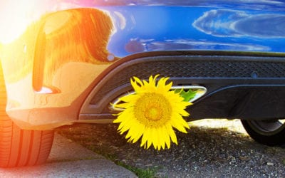 Why is it important to get your car, truck, van or SUV serviced in the spring?