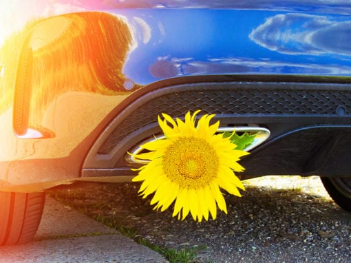 SPRING CAR SERVICE PACKAGE